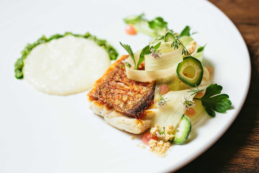 McCradys-American-Red-Snapper,-Polenta-Di-Riso,-Rhubarb,-Celery-and-Green-Almond_Andrew-Celbulka